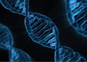 UV Light Causes DNA Damage