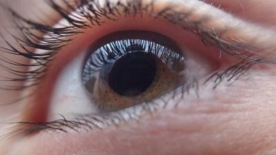 extended wear contact lenses brands - cornea