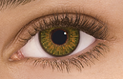 FreshLook ONE-DAY Hazel Sample